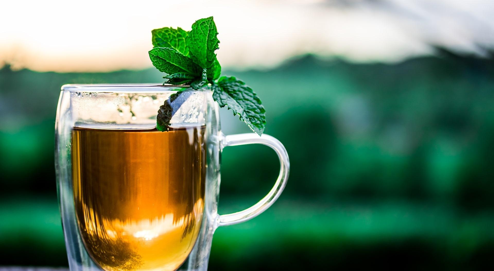 teacup of organic tea