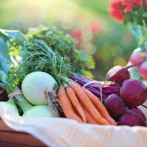 Wholefood_Products