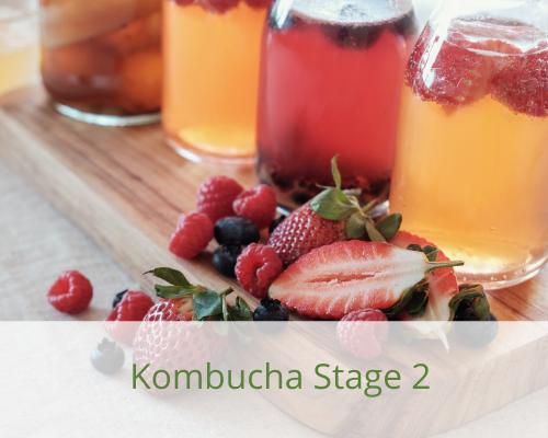 kombucha-2