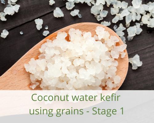 kefir-grains